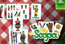 Scopa 132x90 Immagine
