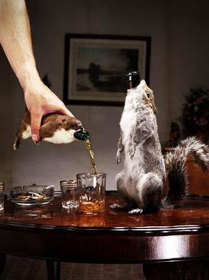birra scoiattolo